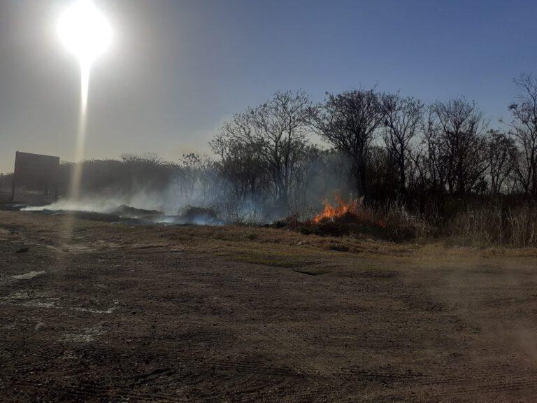 Seeber: Incendio afectó 15 hectáreas de campo y banquina en ruta 17